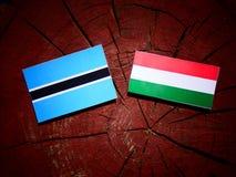 De vlag van Botswana met Hongaarse vlag op een geïsoleerde boomstomp stock illustratie