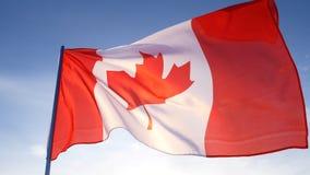 De vlag van Canada op duidelijke blauwe hemel stock afbeeldingen