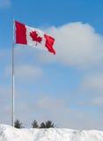De Vlag van Canada in Sneeuwbank stock foto's