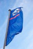 De vlag van Datsun over blauwe hemel Stock Afbeeldingen