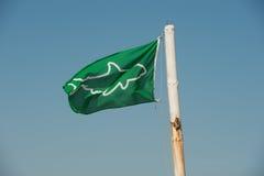 De vlag van de haaivoorlichting Royalty-vrije Stock Afbeeldingen