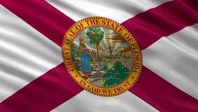 De vlag van de staat van de V.S. van Florida - naadloze lijn stock videobeelden