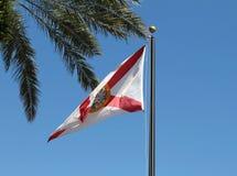 De Vlag van de Staat van Florida Stock Afbeelding