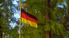 De vlag van Duitsland op een tropische achtergrond stock videobeelden