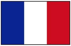De Vlag van Frankrijk stock illustratie