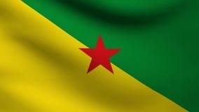 De vlag van Frans-Guyana royalty-vrije illustratie