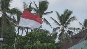 De vlag van Indonesië ontwikkelt zich op wind tegen de achtergrond van palmen op het tropische strand stock video