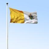 De Vlag van John Paul II Royalty-vrije Stock Afbeelding