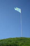 De vlag van Kazachstan Stock Afbeelding