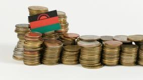 De vlag van Malawi met stapel geldmuntstukken stock video