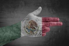 De vlag van Mexico op mannelijke hand zoals een kanon wordt geschilderd dat stock foto's