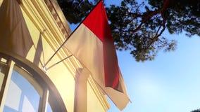 De vlag van Monaco stock video