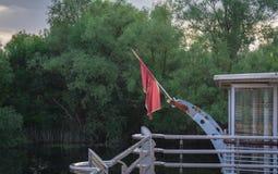 De vlag van Montenegro Stock Fotografie