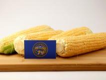 De vlag van Nebraska op een houten die paneel met graan op witte bedelaars wordt geïsoleerd royalty-vrije stock afbeelding