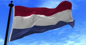 De Vlag van Nederland in de Wind stock footage