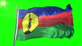 De vlag van Nieuw-Caledonië naadloze het van een lus voorzien 3D teruggevende video Het mooie textiel de lijn van de doekstof gol royalty-vrije illustratie