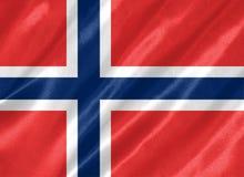 De Vlag van Noorwegen royalty-vrije illustratie