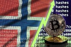 De vlag van Noorwegen en het toenemen groene pijl op het scherm van de bitcoinmijnbouw en twee fysieke gouden bitcoins vector illustratie