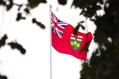 De vlag van Ontario Stock Afbeelding