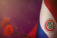 De vlag van Paraguay voor eer van veteranen of herdenkingsdag met rode anjer twee bloeit Glorie aan de helden van Paraguay van oo royalty-vrije illustratie