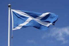De vlag van Schotland Royalty-vrije Stock Foto's