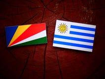 De vlag van Seychellen met Uruguaian-vlag op een geïsoleerde boomstomp stock foto