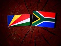 De vlag van Seychellen met Zuidafrikaanse vlag op een geïsoleerde boomstomp stock illustratie