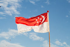 De Vlag van Singapore Royalty-vrije Stock Foto
