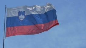 De Vlag van Slovenië in Wind stock videobeelden