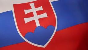 De vlag van Slowakije stock videobeelden