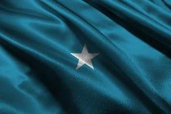De vlag van Somalië, 3D symbool van de de vlag 3D illustratie van Somalië nationale Royalty-vrije Stock Fotografie