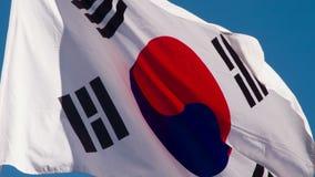 De Vlag van de staat van Korea stock videobeelden