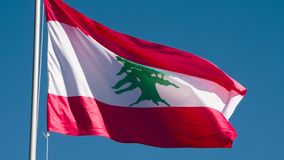 De vlag van de staat van Libanon stock videobeelden