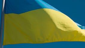 De vlag van de staat van de Oekra?ne stock video