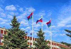 De vlag van de staat van Rusland vliegt in blauwe hemel Stock Foto
