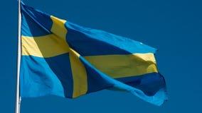 De Vlag van de staat van Zweden stock videobeelden