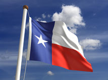 De vlag van Texas (met het knippen van weg) Stock Foto