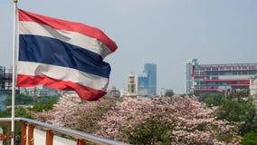 De vlag van Thailand met Roze Trompetbomen Stock Foto