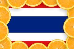 De vlag van Thailand in verse citrusvruchten snijdt kader royalty-vrije stock afbeelding