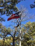 De vlag van Verenigde Staten Stock Afbeeldingen