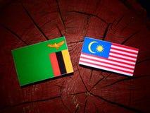 De vlag van Zambia met Maleise vlag op een geïsoleerde boomstomp royalty-vrije illustratie