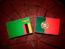 De vlag van Zambia met Portugese vlag op een geïsoleerde boomstomp royalty-vrije stock afbeelding
