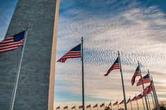 De Vlaggen die van de V.S. Washington Monument omringen bij Zonsondergang Stock Fotografie