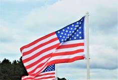 De Vlaggen die van Verenigde Staten in de Wind golven royalty-vrije stock foto's