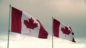 De Vlaggen 4K UHD van Canada stock footage