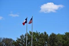 De Vlaggen van Amerikaan en van Texas Stock Afbeeldingen