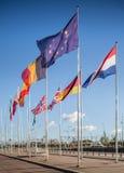 De Vlaggen van de EU royalty-vrije stock fotografie