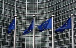 De Vlaggen van de Europese Unie Stock Afbeeldingen