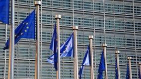 De vlaggen van de Europese Unie stock videobeelden