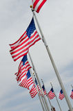 De vlaggen van de V.S. op vlaggestokken Stock Afbeelding